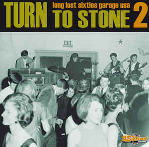 Various ‎– Turn To Stone 2 (Long Lost Sixties Garage USA) 60's Psychedelic Rock Music Album Compilation